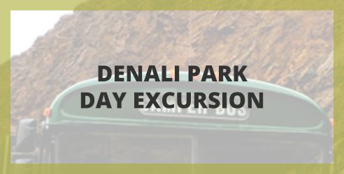 Denali Park Day Excusrions
