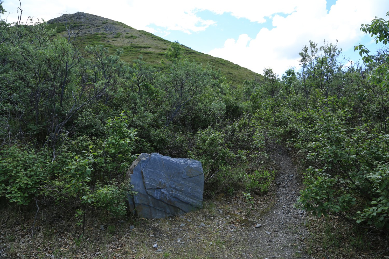 Beginning of Quigley Ridge